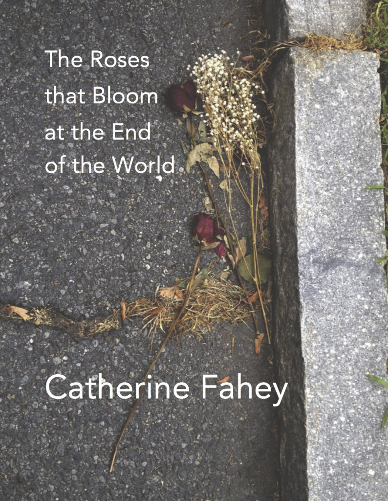 Cover photo of The Roses that Bloom at the End of The World